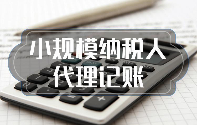 做账报税,会计基础做账报税,做账报税(小规模)